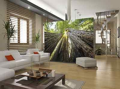 wall art nature tree 19 best city and skyline wallpaper murals images on pinterest